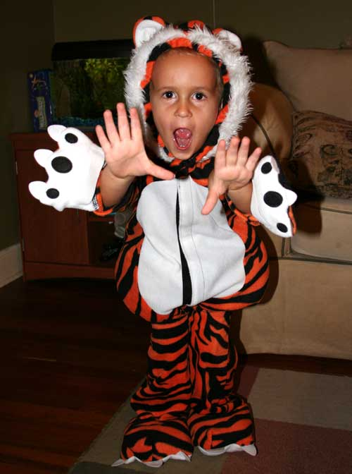 Luke ROARS in his tiger costume