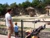 Andy and Luke watch elephant
